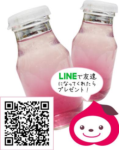 LINEに友達登録して「新日本三大夜景ジュレ」をプレゼント