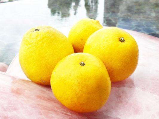 甘酸っぱい香り♪柑橘風呂
