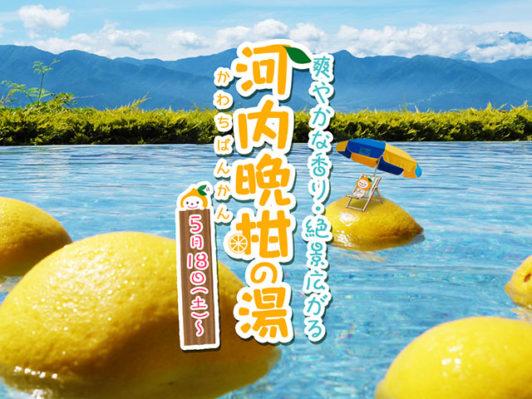 河内晩柑の湯