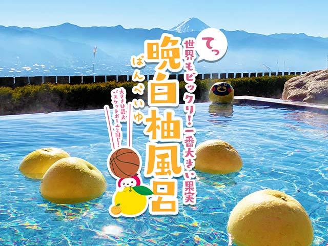 晩白柚風呂